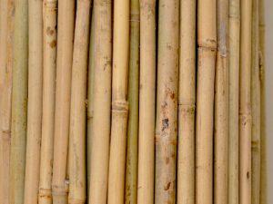 tyczki bambusowe -ogrodowe